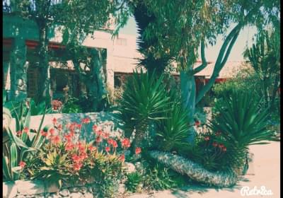 Agriturismo Bungalow Il Ranch